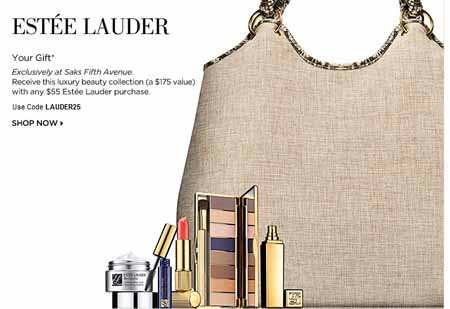 Estee Lauder Gift With Purchase 2010: Saks Beauty Gift