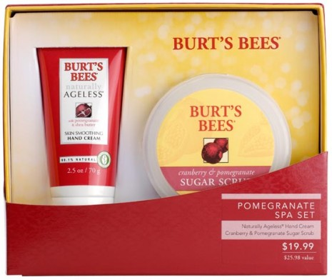 burts bees holiday 2010, pomegranate spa set, gift ideas