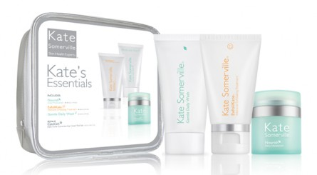 mothers day gift guide 2012, mothers day gift ideas 2012, kate somerville essentials kit